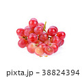 red grape on white background 38824394