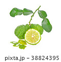 bergamot on white background 38824395