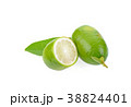 fresh lime on white background 38824401