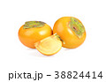 persimmon on white background 38824414