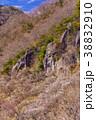 《神奈川県》湯河原梅林・幕岩 38832910