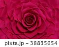 薔薇 プリザーブドフラワー 花の写真 38835654