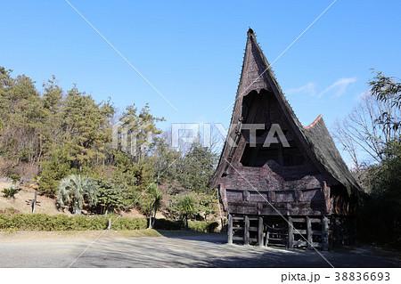 インドネシアの家 スマトラ島の家 38836693
