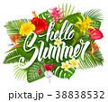 トロピカル 熱帯 フラワーのイラスト 38838532
