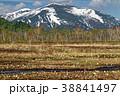 尾瀬 至仏山 尾瀬ヶ原の写真 38841497