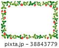 フレーム 苺 果実のイラスト 38843779