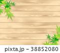 もみじ 新緑 若葉のイラスト 38852080