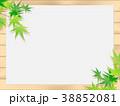 もみじ 新緑 若葉のイラスト 38852081
