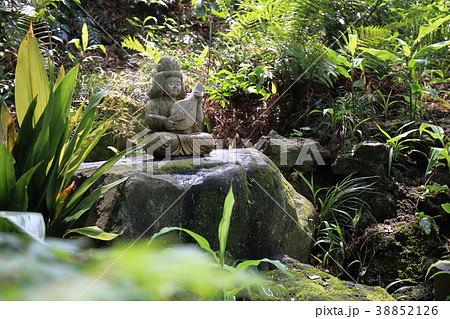 千葉県松戸市の本土寺 銭洗い弁天 38852126