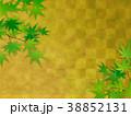 もみじ 葉 背景のイラスト 38852131