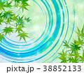 新緑 若葉 葉のイラスト 38852133