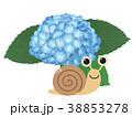 カタツムリと紫陽花 38853278