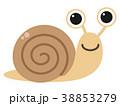 カタツムリ 38853279