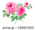 花 薔薇 ピンクのイラスト 38862005