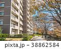 住宅 集合住宅 団地の写真 38862584