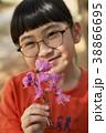 ツツジ 花 春の写真 38866695