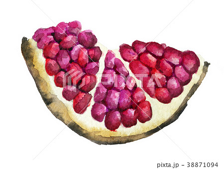 watercolor sketch of ripe pomegranate fruit  38871094