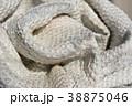 美しい日本の布、絹織物、布地、職人技、高技術、和風素材 38875046