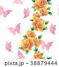 植物 花 薔薇のイラスト 38879444