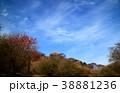 春景色 38881236