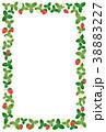 フレーム 苺 果実のイラスト 38883227