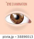 目 眼 ビジョンのイラスト 38896013