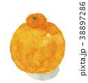 デコポン しらぬい 果物のイラスト 38897286