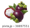 Mangosteen with green leaves composition isolated 38897551