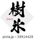 樹氷・Juhyō(筆文字・手書き) 38914428