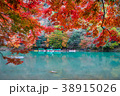 秋の嵐山 38915026