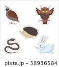 動物 マンガ 漫画のイラスト 38936584