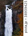 【日本の滝100選】紅葉の華厳の滝 38939425