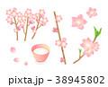 桃の花 38945802
