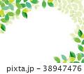 新緑 水彩イラスト 38947476