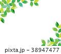 新緑 水彩イラスト 38947477