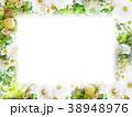 背景-花-フレーム 38948976