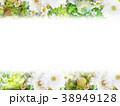 背景-花-フレーム 38949128