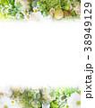 背景-花-フレーム 38949129