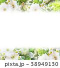 背景-花-フレーム 38949130