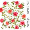ばら 花 植物のイラスト 38949746