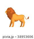 ライオン 動物 ベクターのイラスト 38953606