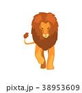 ライオン 動物 ベクターのイラスト 38953609