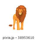 ライオン 動物 ベクターのイラスト 38953610