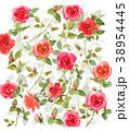 バラ 花 植物のイラスト 38954445
