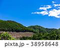伐採 林業 森林の写真 38958648