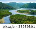 奄美大島 マングローブ原生林 38959301