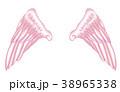 翼のイラスト 羽 羽根 翼 鳥 天使 38965338
