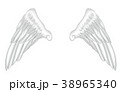 翼のイラスト 羽 羽根 翼 鳥 天使 38965340