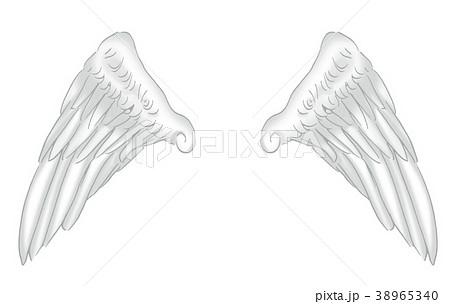 翼のイラスト 羽 羽根 翼 鳥 天使のイラスト素材 38965340 Pixta