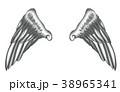 翼のイラスト 羽 羽根 翼 鳥 天使 38965341